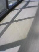 うちの会社の廊下に差し込む日差しです