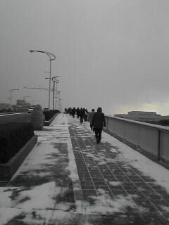 千歳大橋の上です