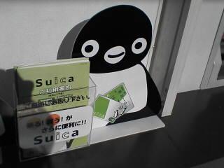 ペンギンがお出迎え(^_^)