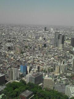 都庁展望台から中野方面を見る