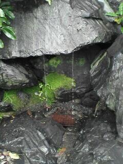 この脇に飲み水用の蛇口とコップも用意されています