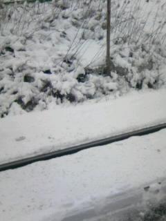 線路も雪に埋まりそう