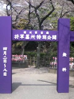 徳川家霊廟特別公開の入口