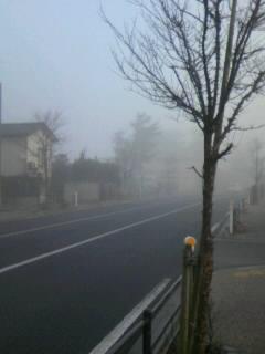 霧深き朝?新潟市西区