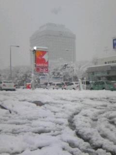 新潟市内交通まひ